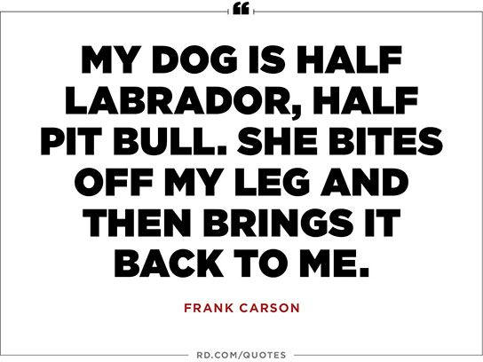 20 One Liners Only Dog Owners Will Understand Funny One Liners Funny Dating Quotes Quotable Quotes