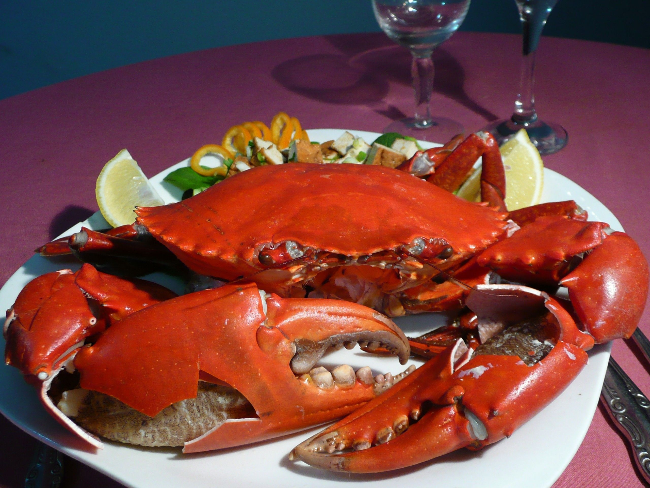 Mud Crab. Yum!!! | Crab recipes, Specialty foods, Gourmet recipes