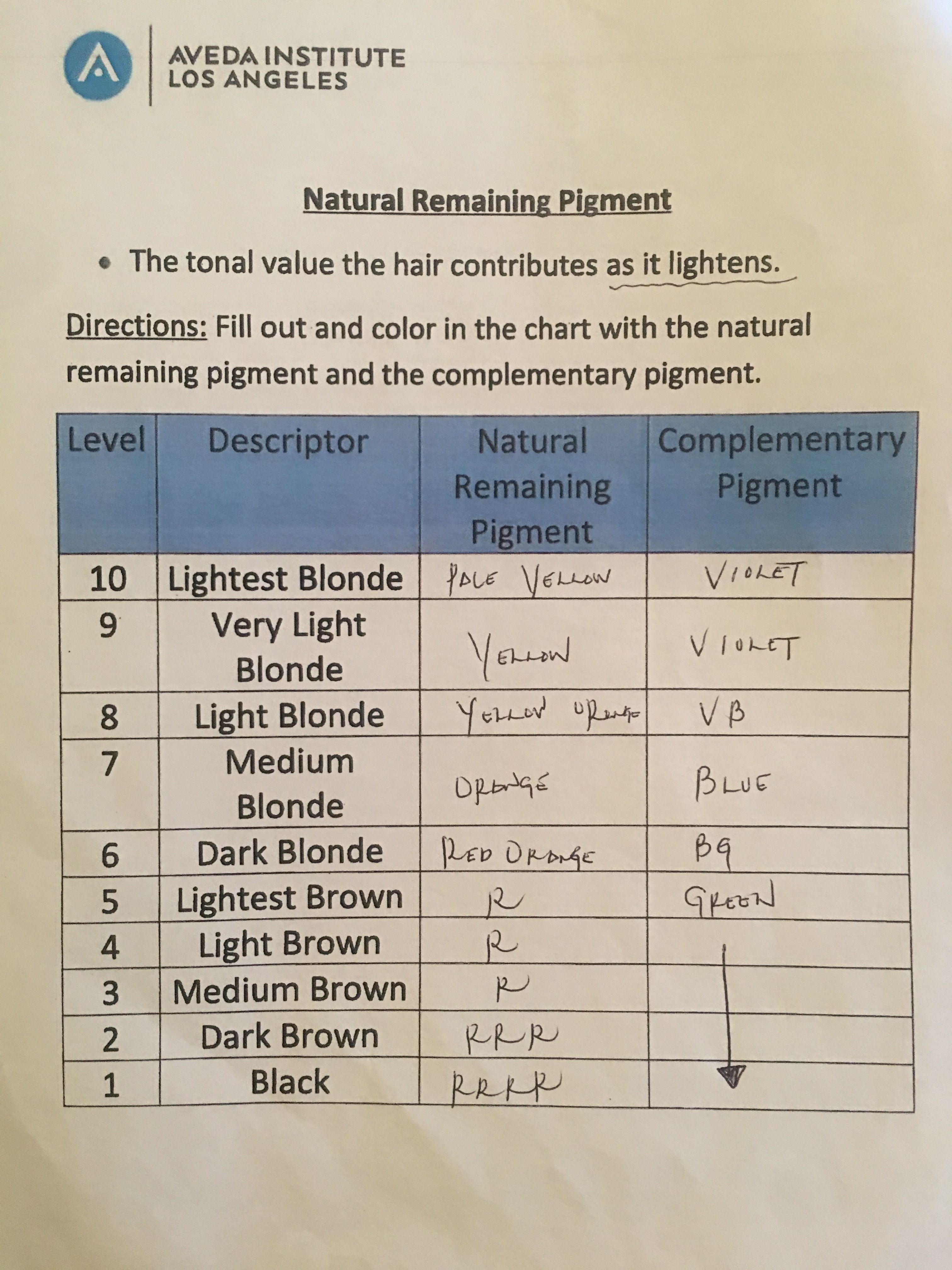 Pin About Light Blonde On Worksheets