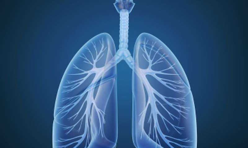 Fiber intake linked to measures of lung function | Health and ...
