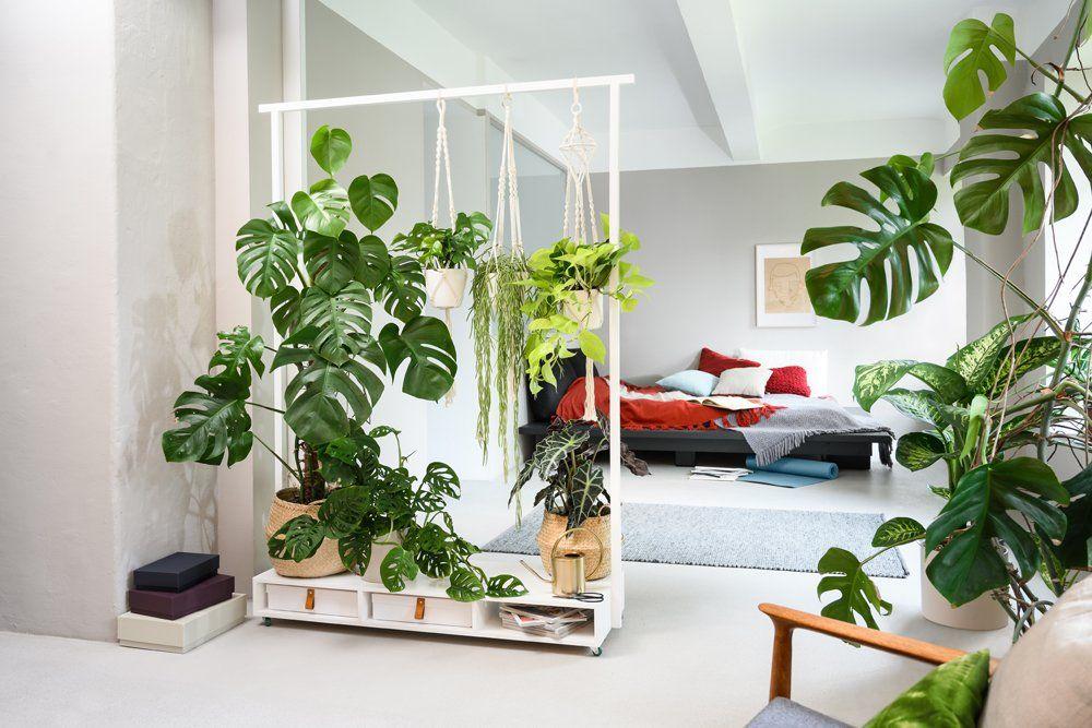Photo of Die besten Einrichtungsideen für den Nature-Look – DAS HAUS