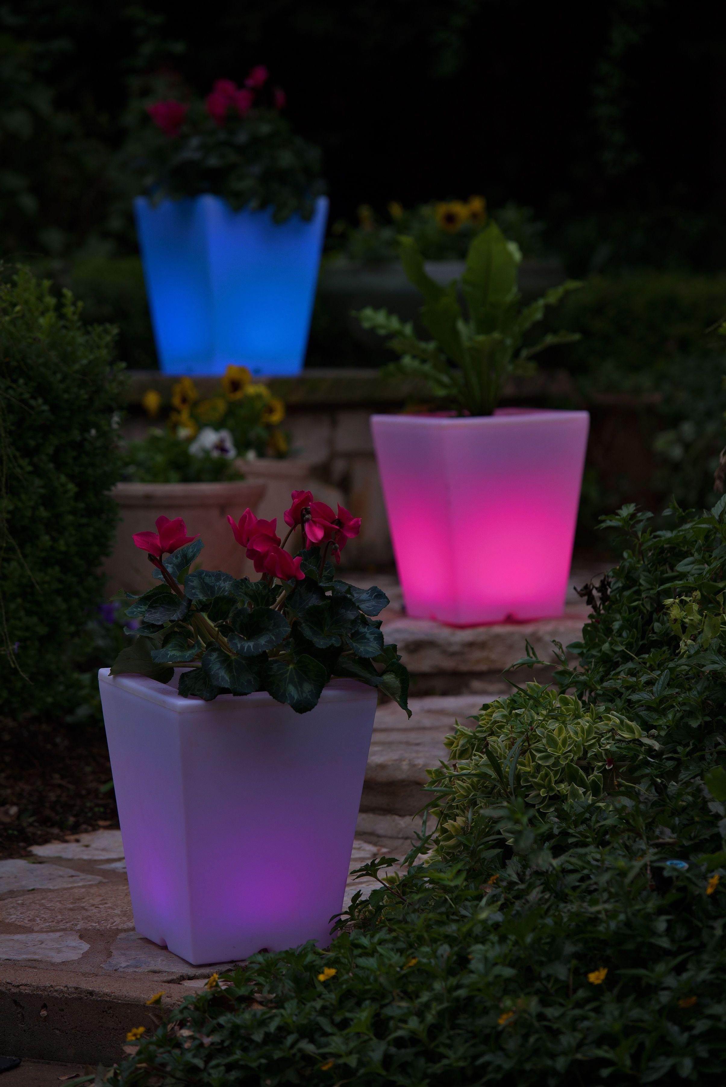 Solar Illuminated Planter Small Square Planter Gardeners Com Solar Lights Garden Square Planters Patio Planters
