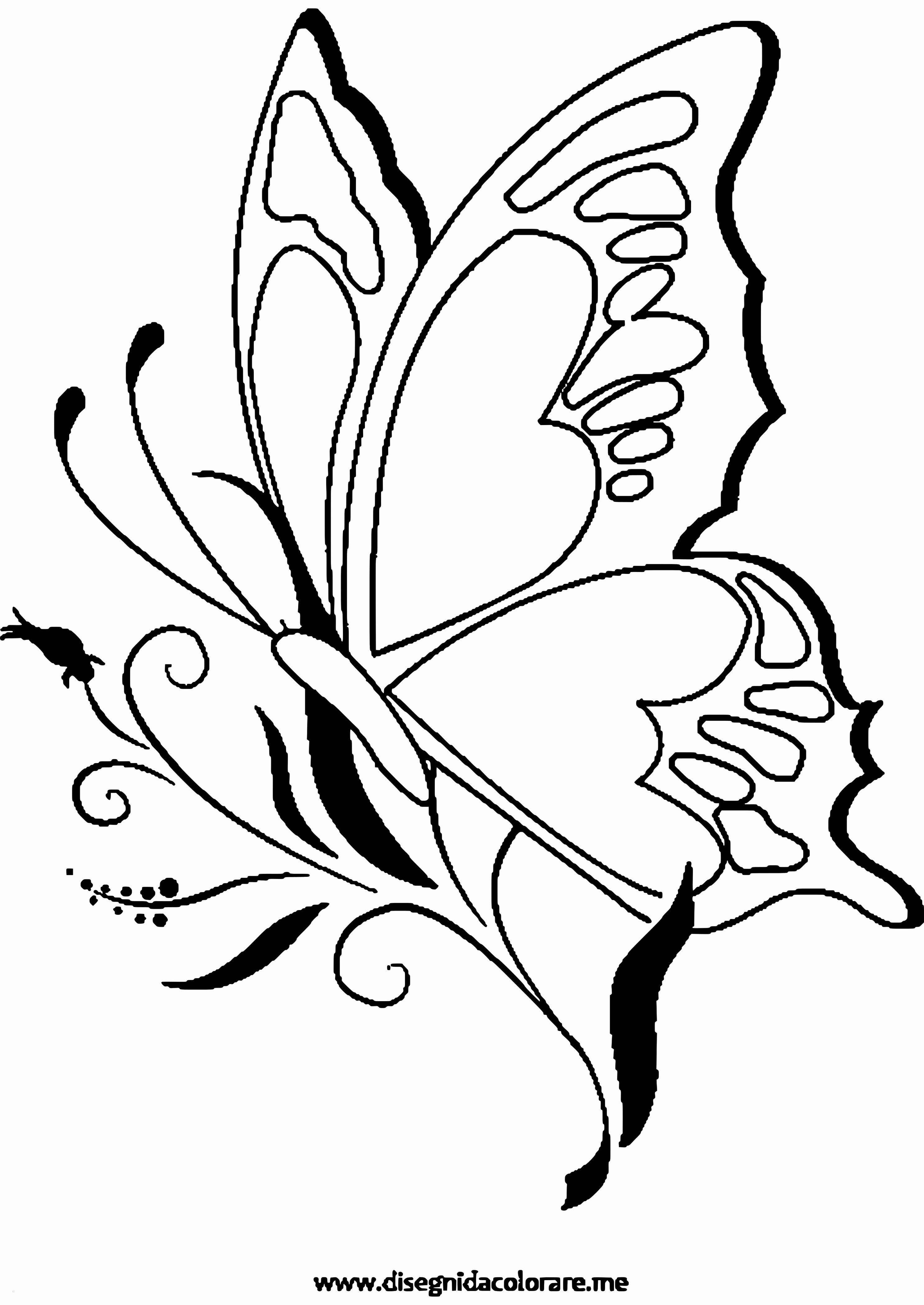 8 Einzigartig Ausmalbilder Schmetterling Kostenlos Ausdrucken