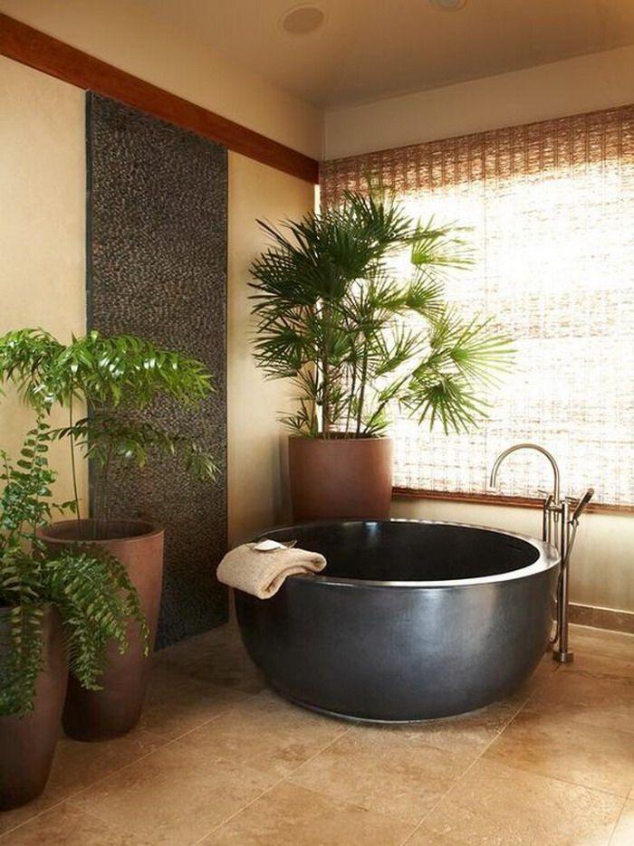 Corner Indoor Plant in Soft Warm Bathroom Spa