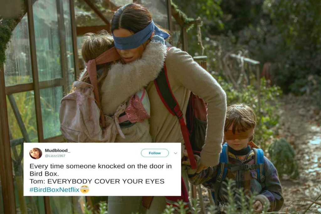 23 Hilarious Bird Box Memes That Are Probably Better Than The Movie Humor Funny Memes Teacher Humor