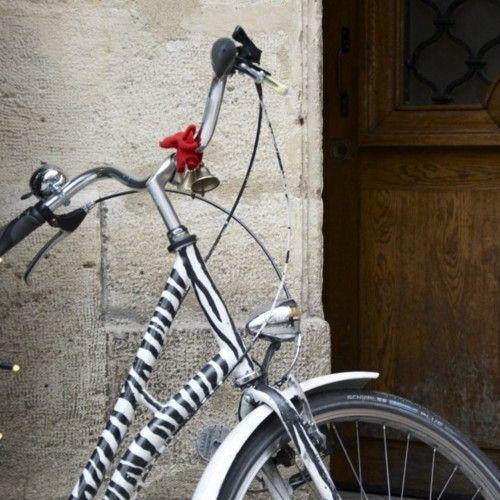 Zebra Bike Zebra Little Brown I Want To Ride My Bicycle