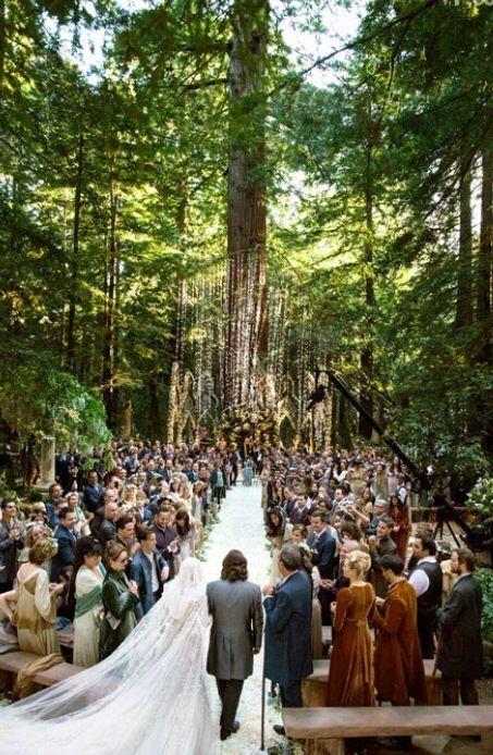 Ventana Big Sur Wedding Enchanted Forest Wedding Forest Wedding Redwood Forest Wedding