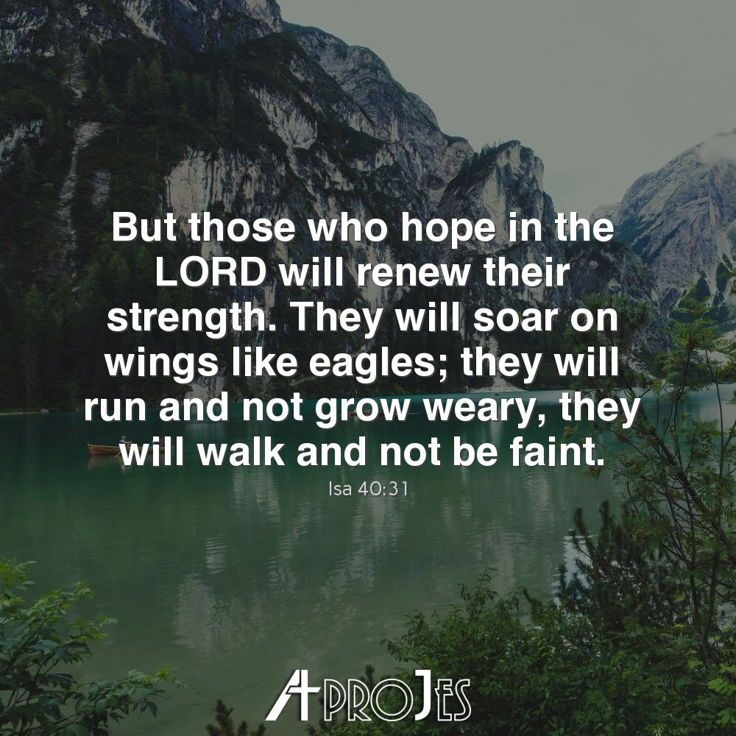 we will run and not grow weary we will walk and not be faint