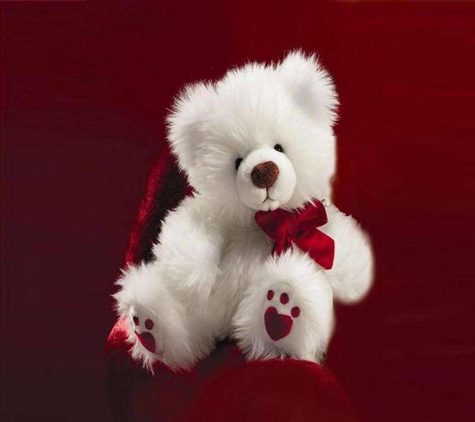 Download White Teddy Bear Wallpaper By Luckyman 2e Free On Zedge Now Browse Millions Of Popu Teddy Bear Wallpaper Teddy Bear Pictures Teddy Bear Images