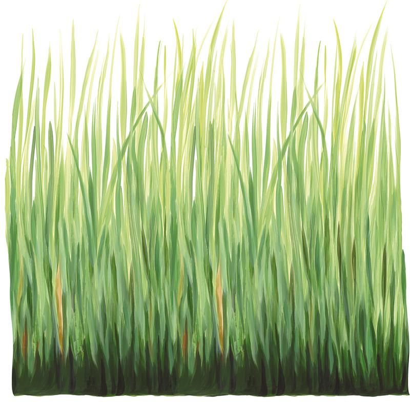 tall grass wall decal or could paint? | baby | wall decals, wall