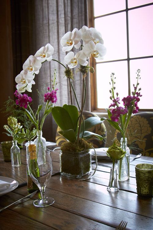 Simple orchid centerpiece wedding flowers pinterest