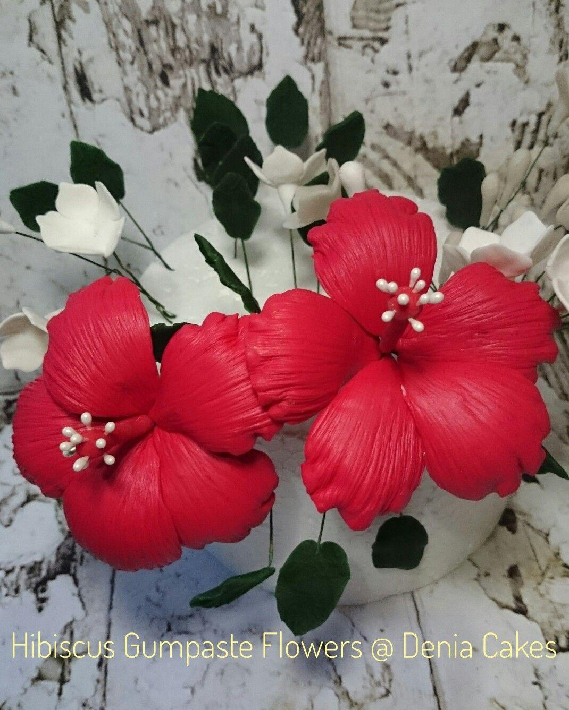 Hibiscus Gumpaste Flowers Denia Cakes Pinterest