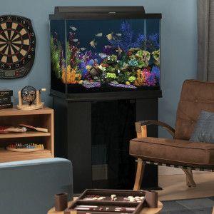 Null Aquarium Unique Fish Tanks Fish Tank