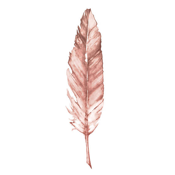 Rose Gold Feather Print Copper Print Watercolor Feather Imagens
