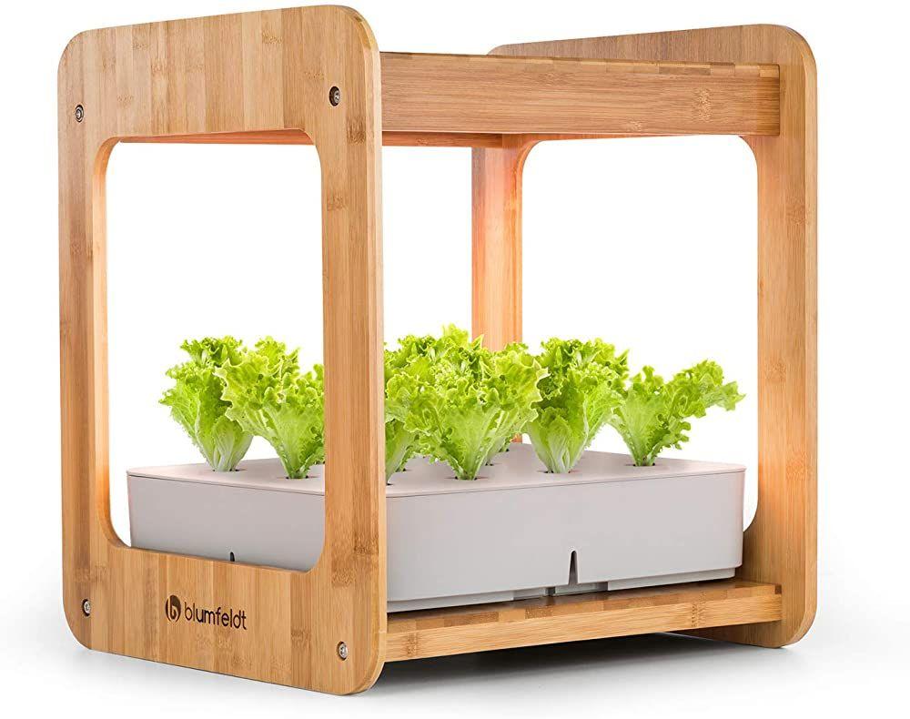 Blumfeldt Urban Bamboo Indoor Garden Pflanzsystem Hydroponisch Automatische Beleuchtung Mit 24w Led Integrie In 2020 Zimmergewachshaus Diy Fruhlingsdeko Mini Garten