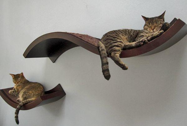 pin von sternchen auf katzen m bel pinterest katzen katzenm bel und katzenbaum. Black Bedroom Furniture Sets. Home Design Ideas