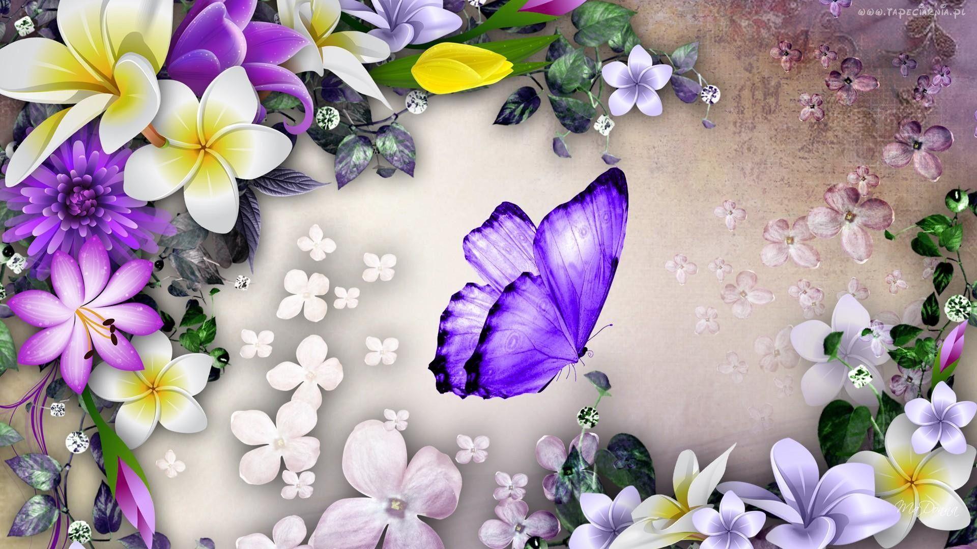 Grafika 2d Kwiaty Motyl Butterfly Wallpaper Backgrounds Hd Flowers Butterfly Wallpaper