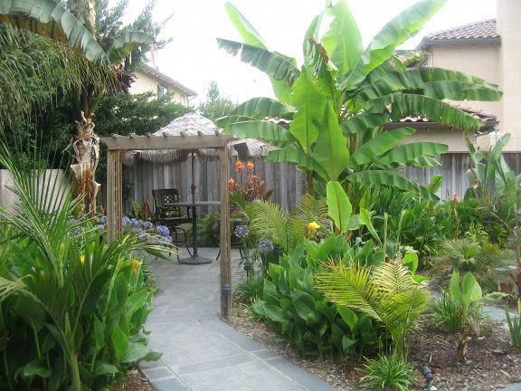 Organic Gardening Degree  #OrganicGardeningDocumentary #tropischelandschaftsgestaltung