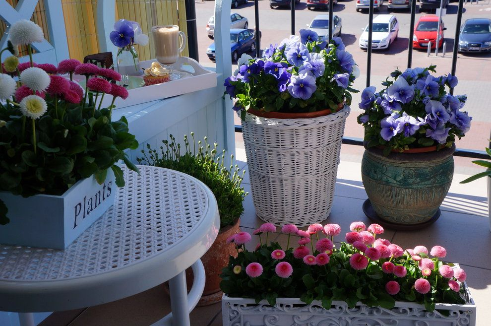 Zdjecie Nr 3 W Galerii Wiosenny Balkon W Pastelach Outside Living Planter Pots Plants