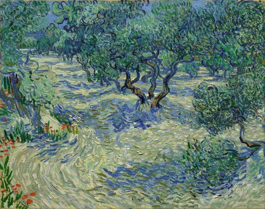 Olive grove, Vincent van Gogh, 1889. | art | Pinterest | Pintor van ...