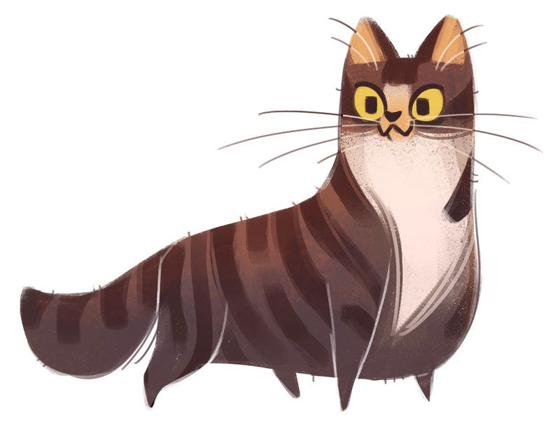 329: Tabby by Daily Cat Drawings on Tumblr | 插畫 ... Tabby Cat Cartoon Drawing