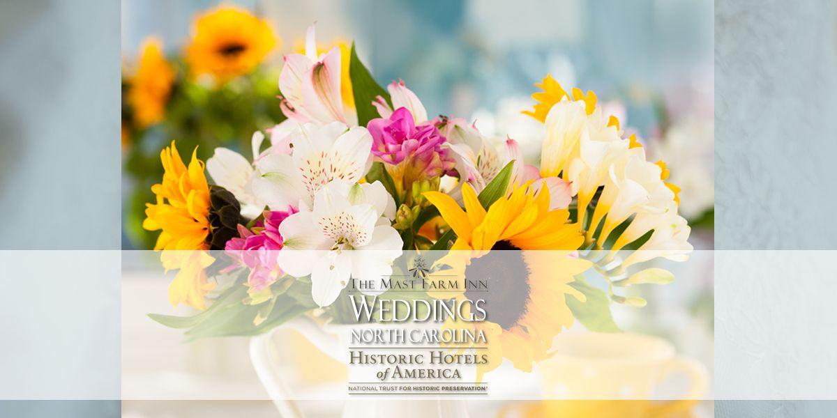 Weddings North Carolina Journal, Weddings, Elopements