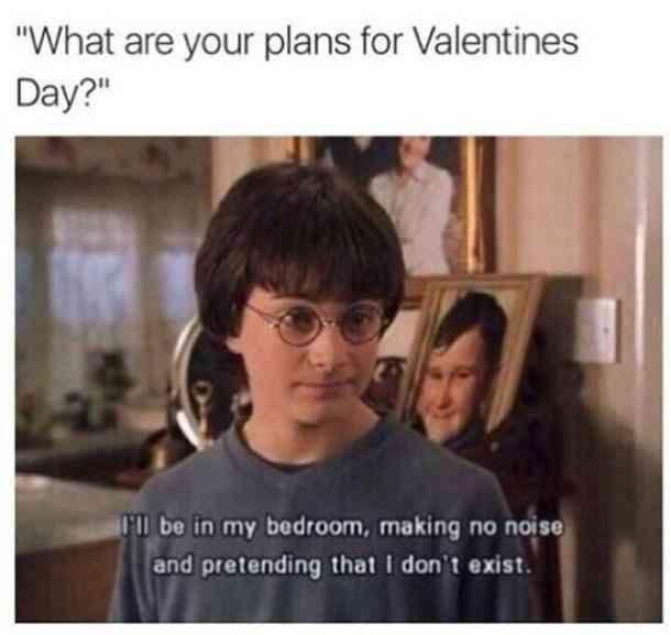 100 Best Funny Valentine S Day Memes Valentines Quotes Funny Valentines Day Memes Valentines Day Memes Single