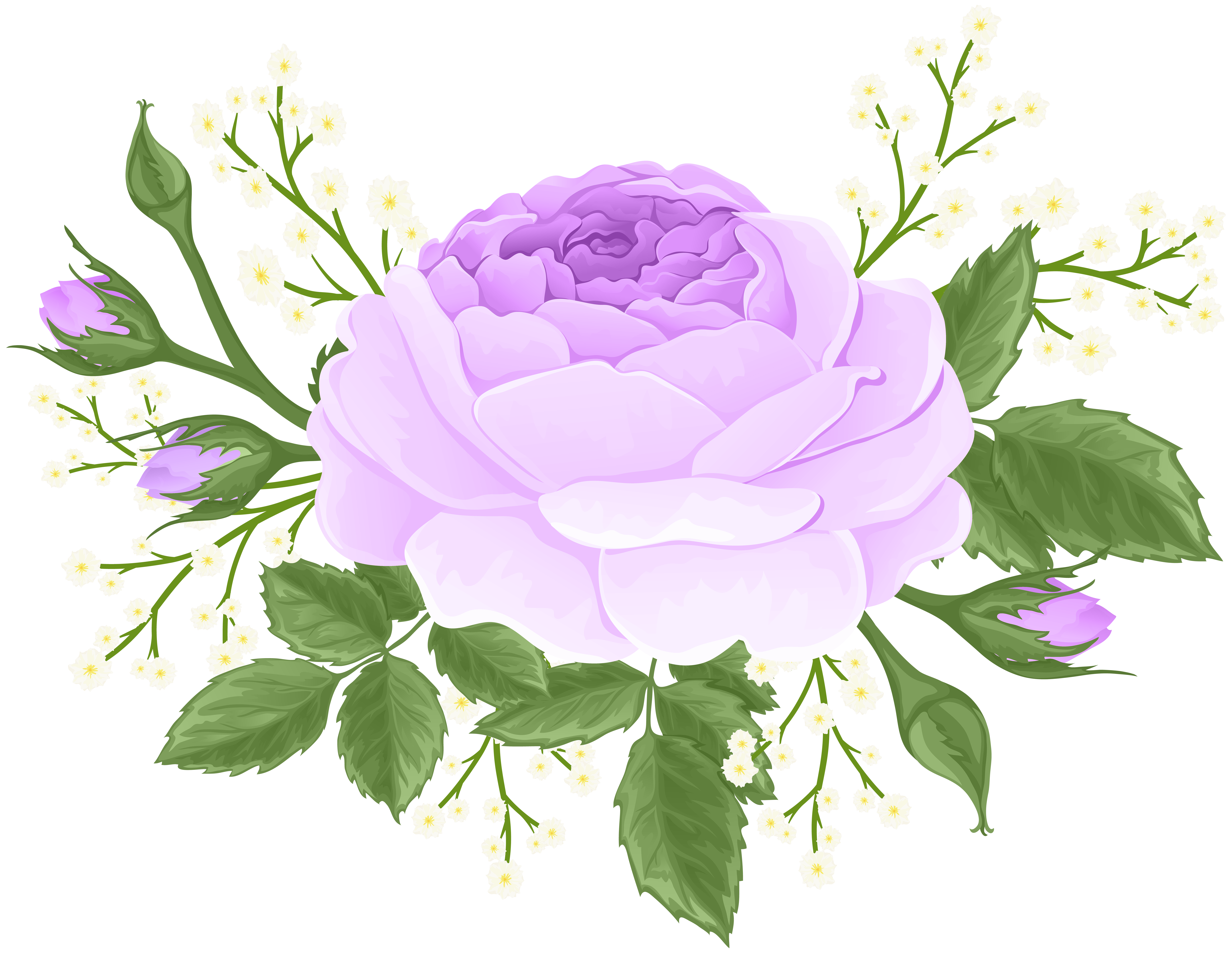 Purple Rose with White Flowers PNG Clip Art Image