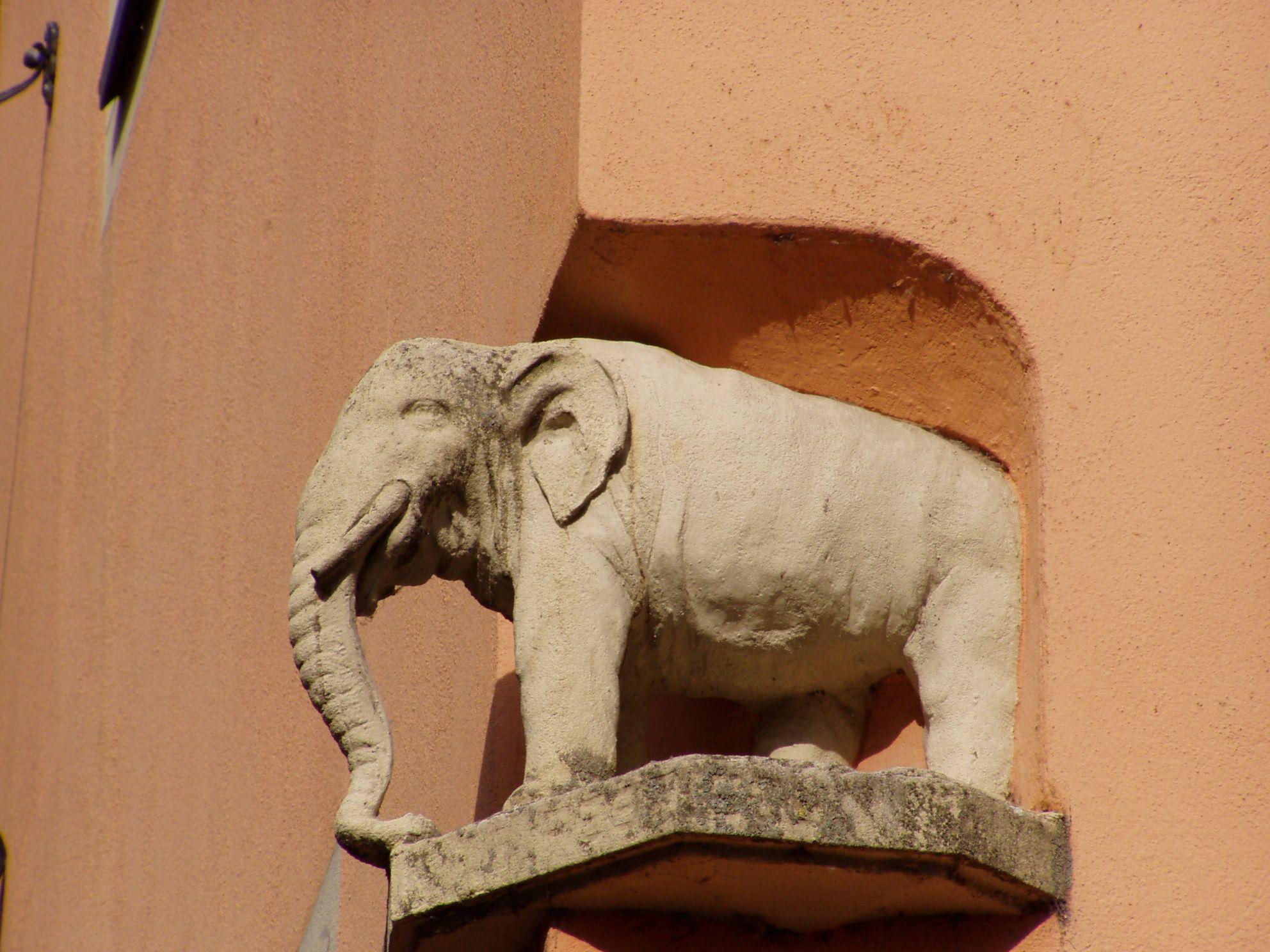 Ein Elefant, unterwegs auf Reisen getroffen...