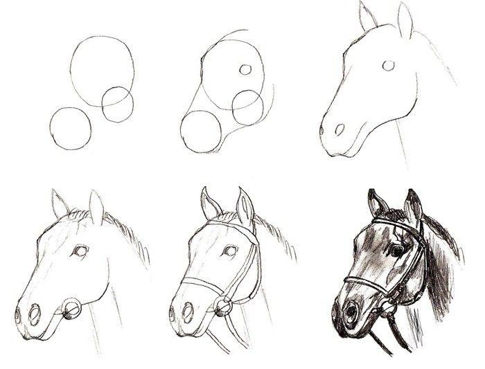 Рисование картинок поэтапно легко