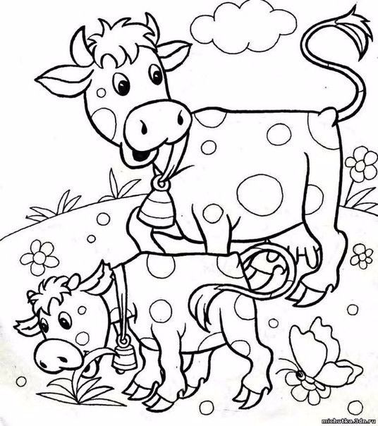 image 1 536x604 247kb cow coloring pages coloring pages coloring pages for kids. Black Bedroom Furniture Sets. Home Design Ideas