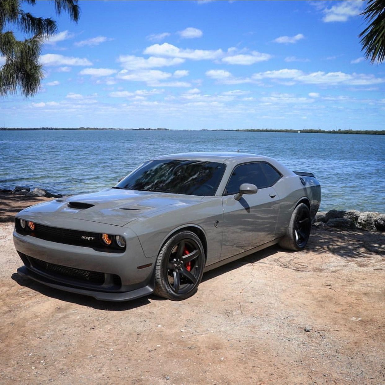 Dodge Challenger Malaysia Price >> [widebody hellcat destroyer grey] - 28 images - for sale challenger hellcat autos post, 2018 ...