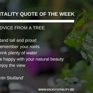 QUOTE OF THE WEEK ERIN STUTLAND