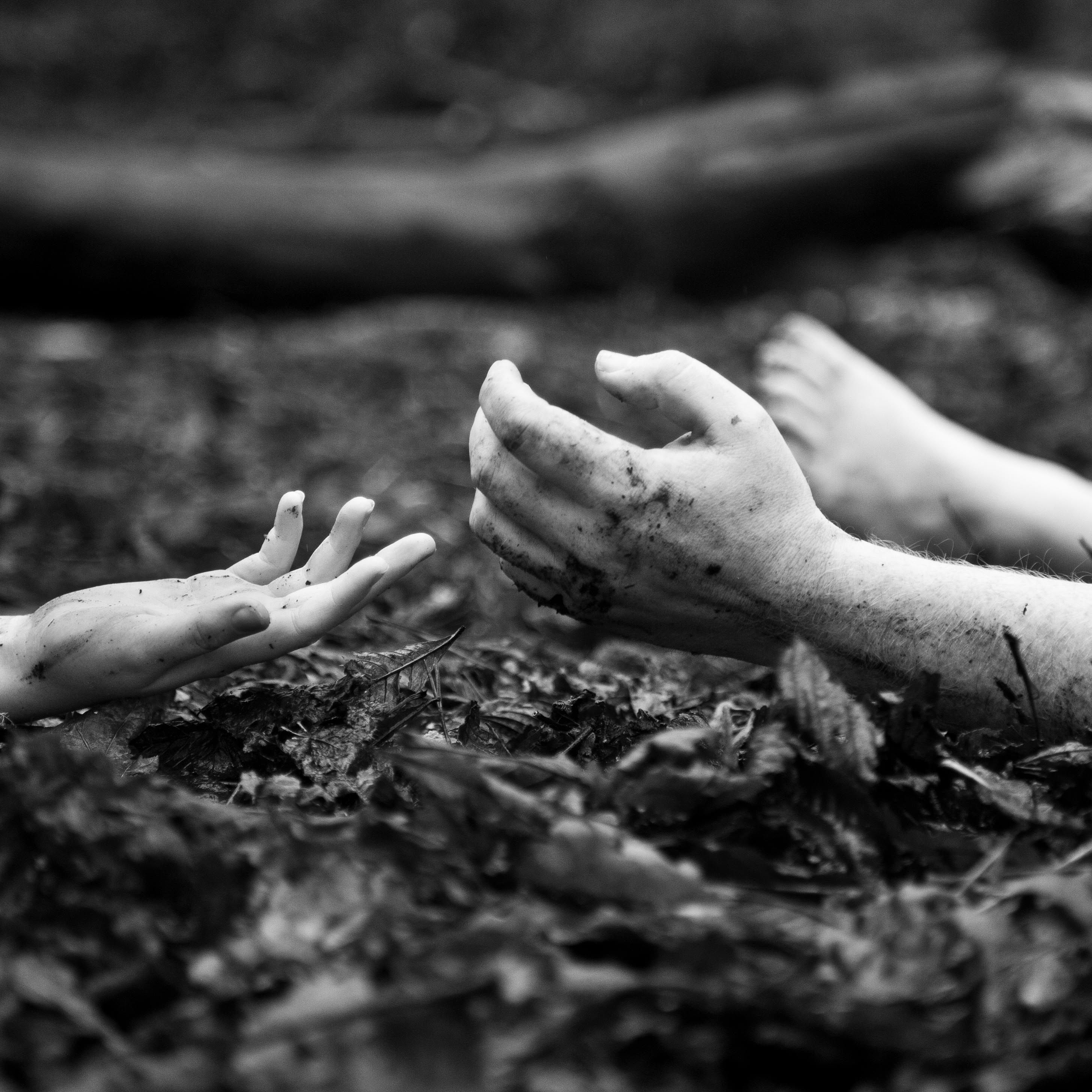 sally mann body farm - Photo