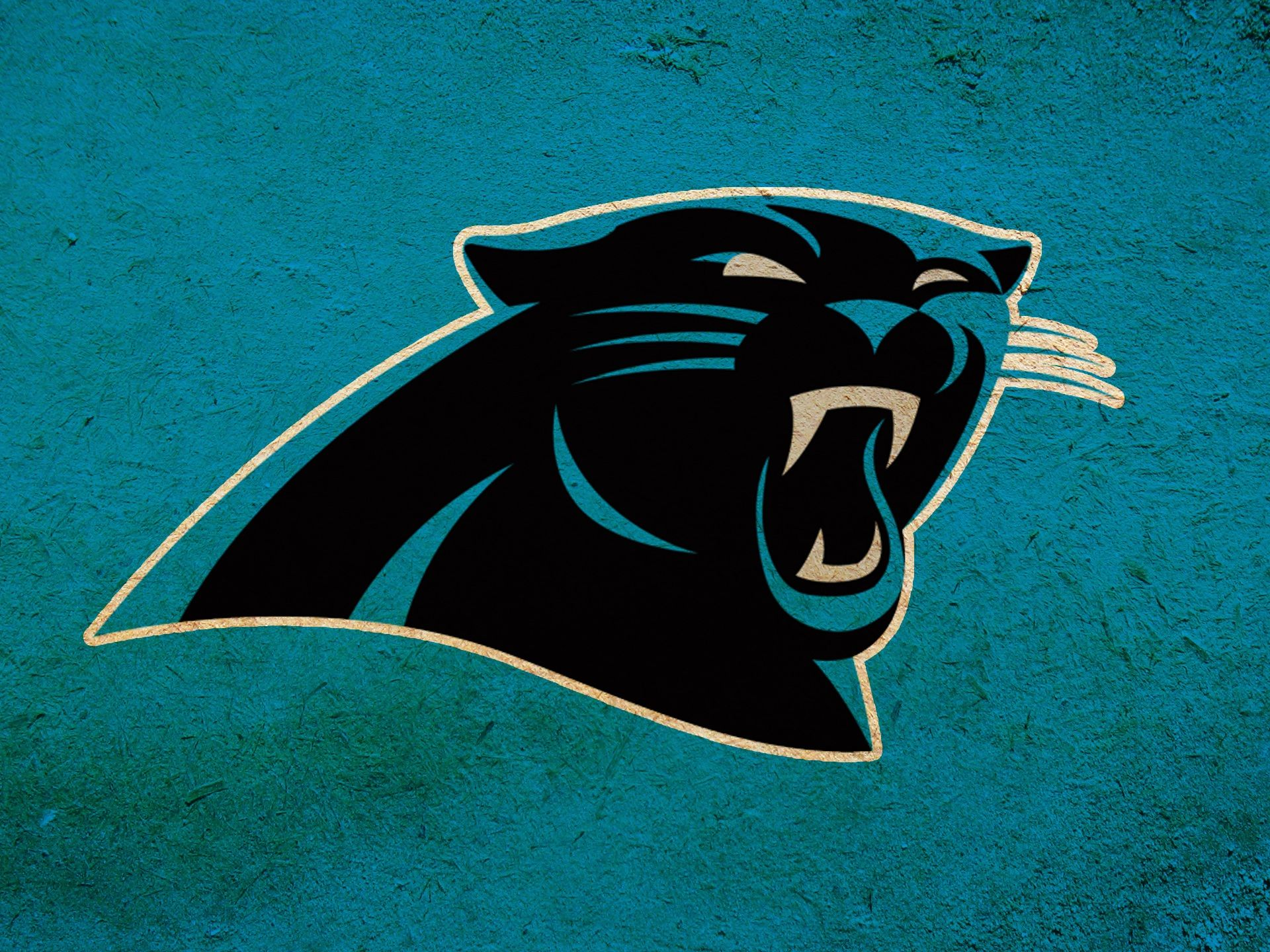 Panthers wallpaper find best latest panthers wallpaper for - Carolina panthers mobile wallpaper ...