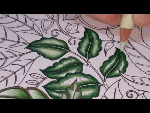 Leaf Coloring Enchanted Forest Youtube Enchanted Forest Coloring Book Enchanted Forest Coloring Johanna Basford Coloring Book