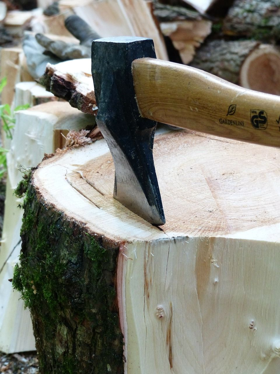Forest, Ax, Axe, Hack, Wood Chop, Make Wood, Log forest