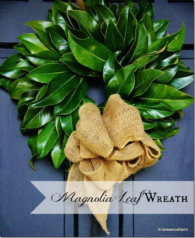 Photo of 5 Holiday Wreath Projects (and Some Big News) – Thistlewood Farm