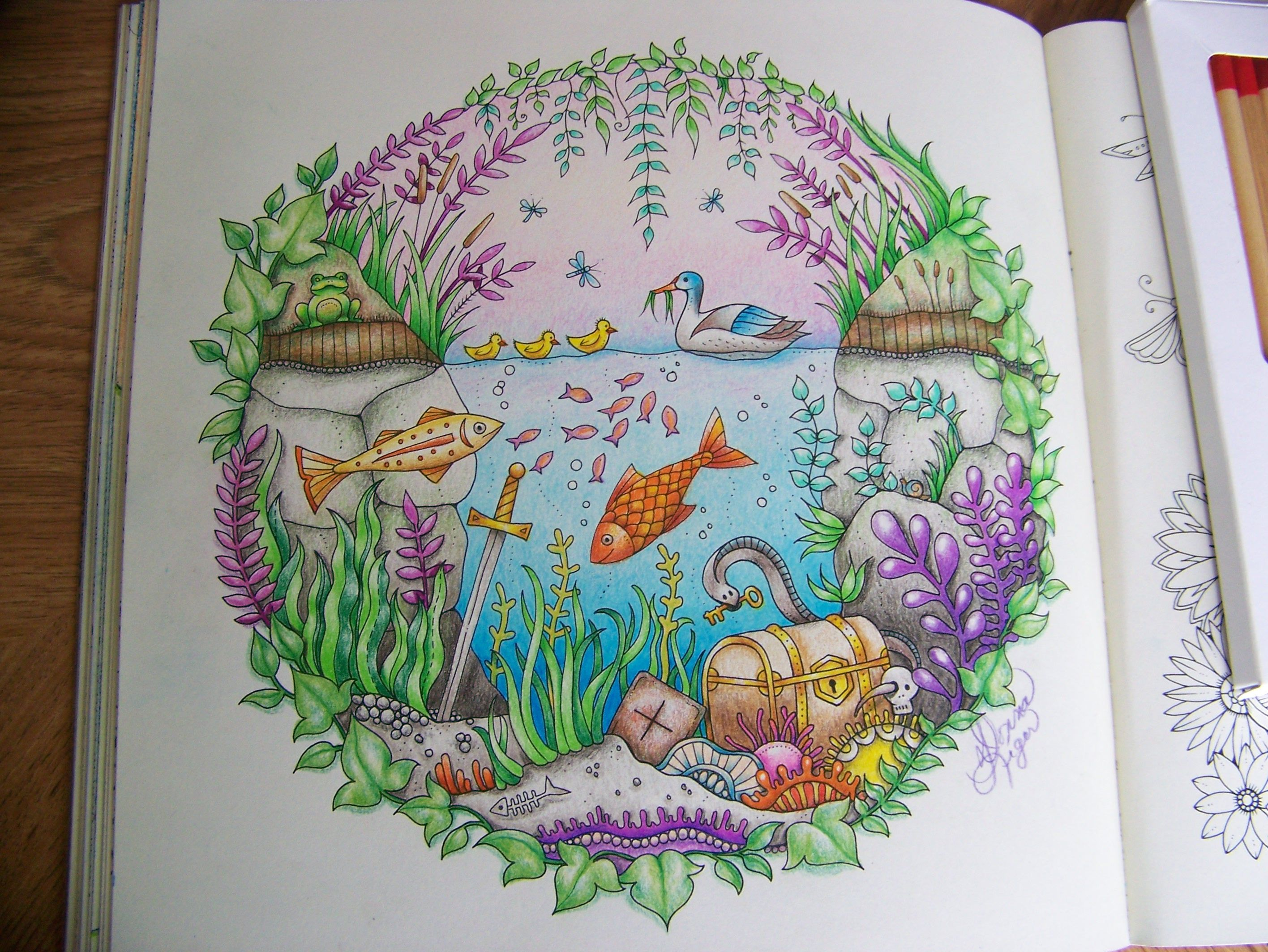 The enchanted forest coloring book uk - From The Enchanted Forest Johanna Basford Adult Coloring Book Duck Treasure