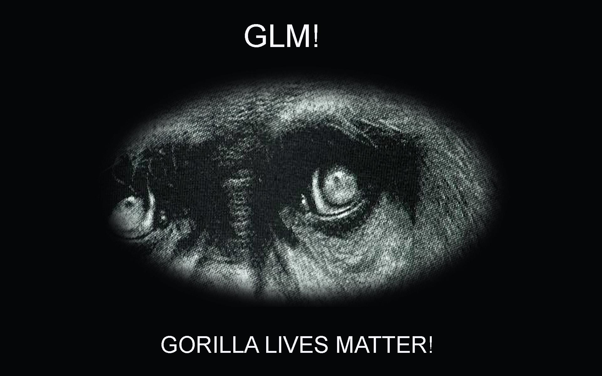 Funny Computer Backgrounds Meme : Glm gorilla lives matter funny desktop computer wallpaper
