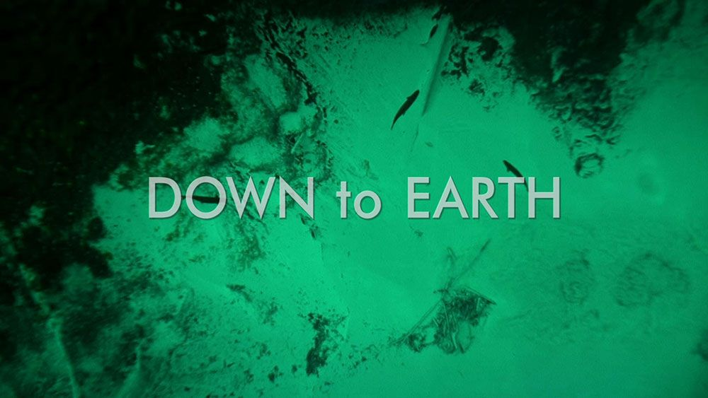blog about the inspiring film Down to earth (blog link via website)