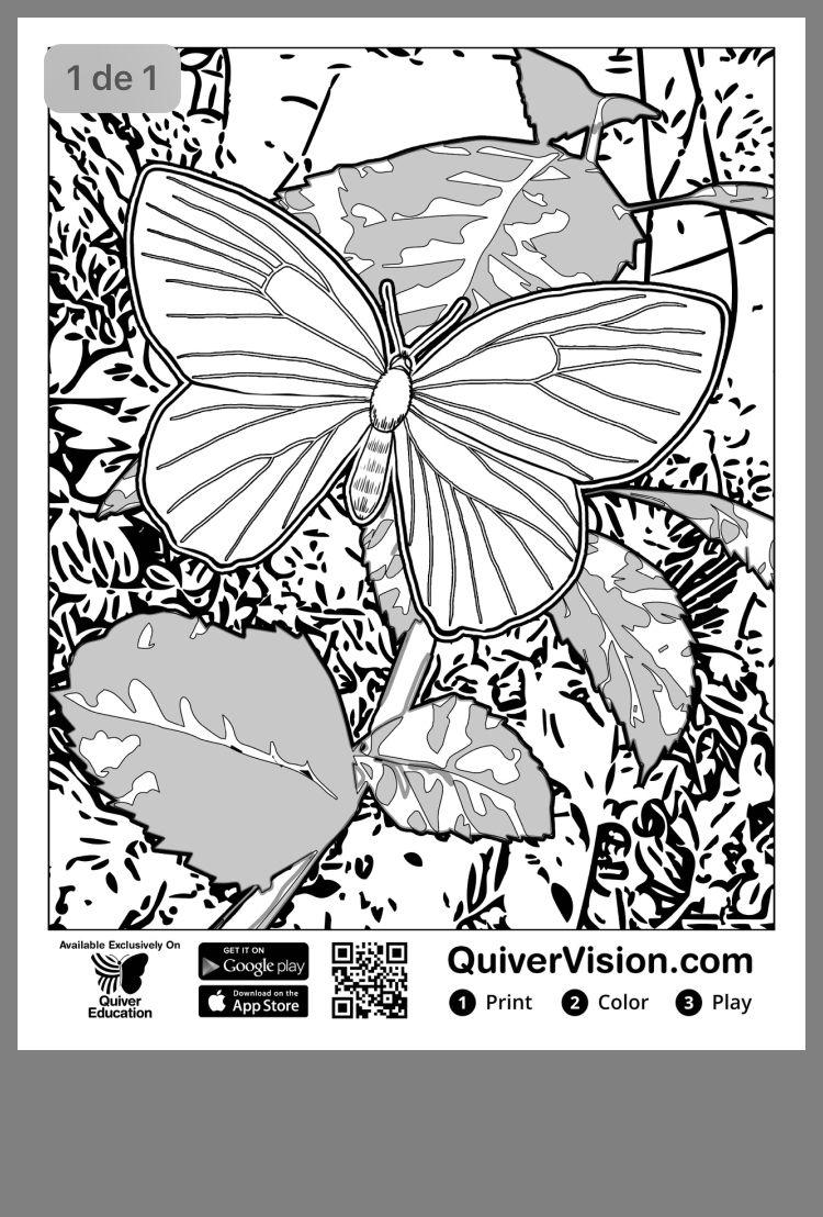 Pin By Zeynep Caliskan On Sản Phẩm Tự Lam Va Thủ Cong Mỹ Nghệ Quiver Coloring Pages Augmented Reality