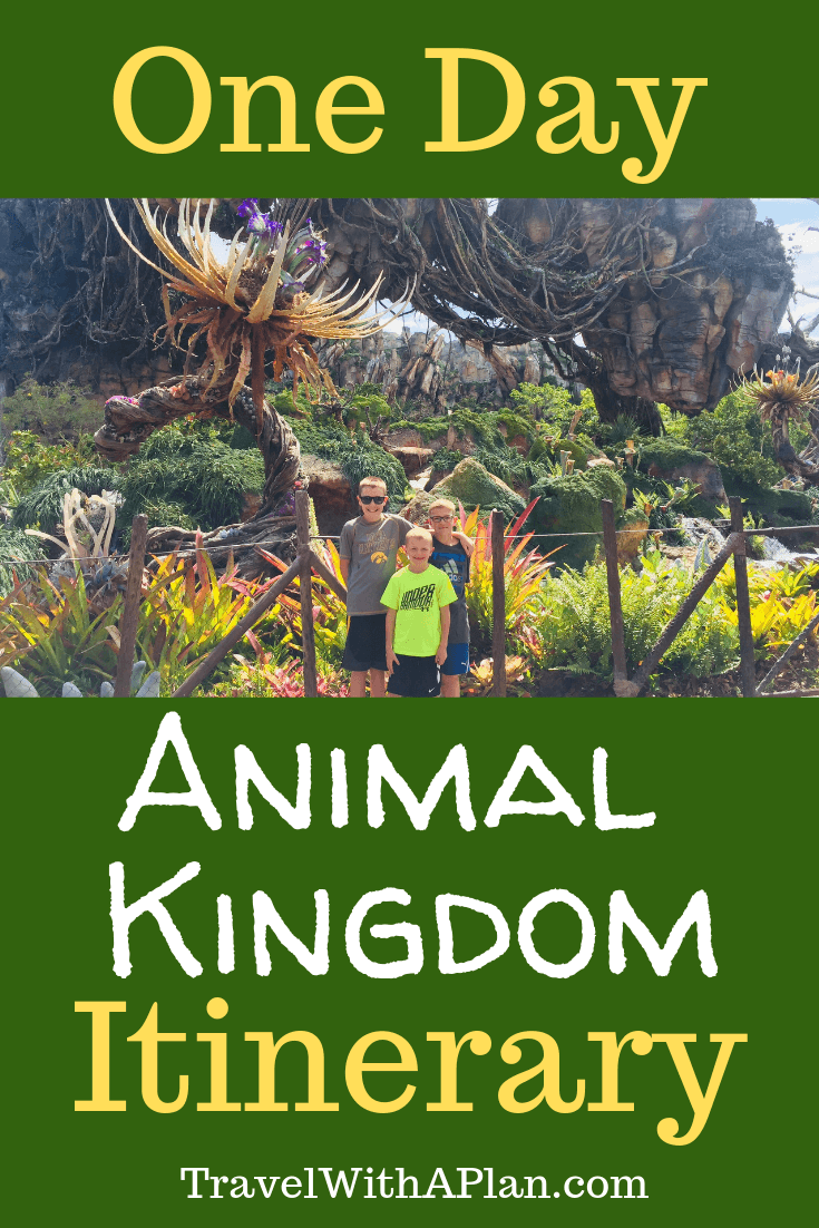1 Day Animal Kingdom Itinerary   Disney   Travel with a Plan
