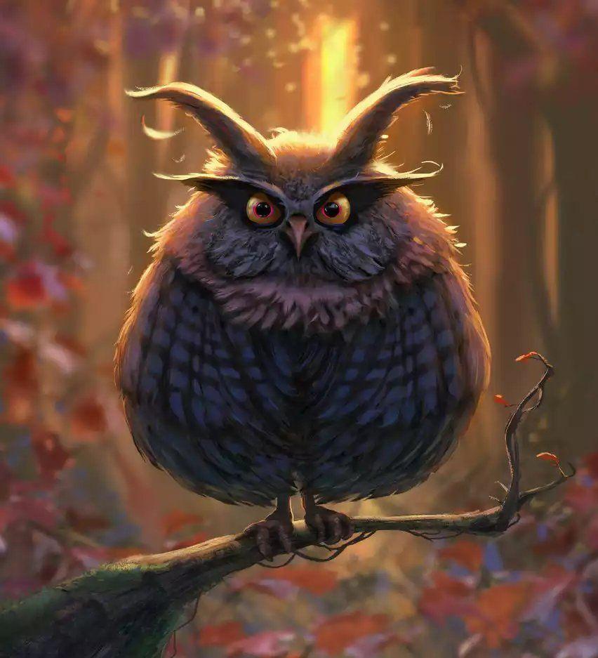картинка сердитая сова одной