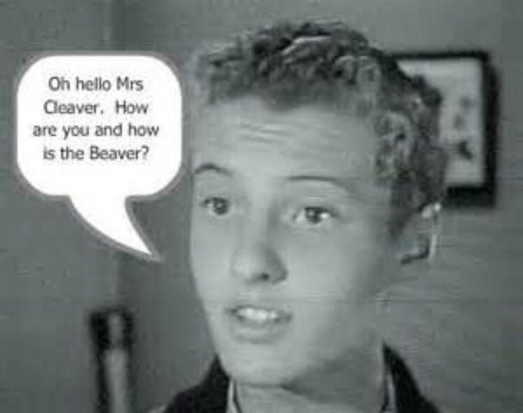 Eddie Haskell Quotes Mesmerizing Eddie Haskell  Leave It To Beaver  Pinterest