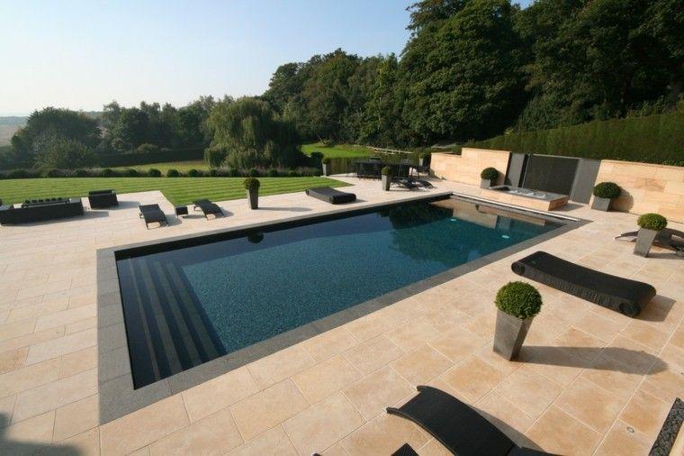 diseños de jardines modernos con piscina rectangular | piscinas