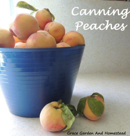 How to can fresh peaches in honey syrup (no sugar added). These are delicious!
