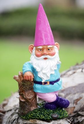 Pin On Gnomes Gone Wild