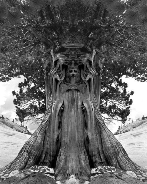 Jerry Uelmanns-old school surreal photomontage (not Photoshop)