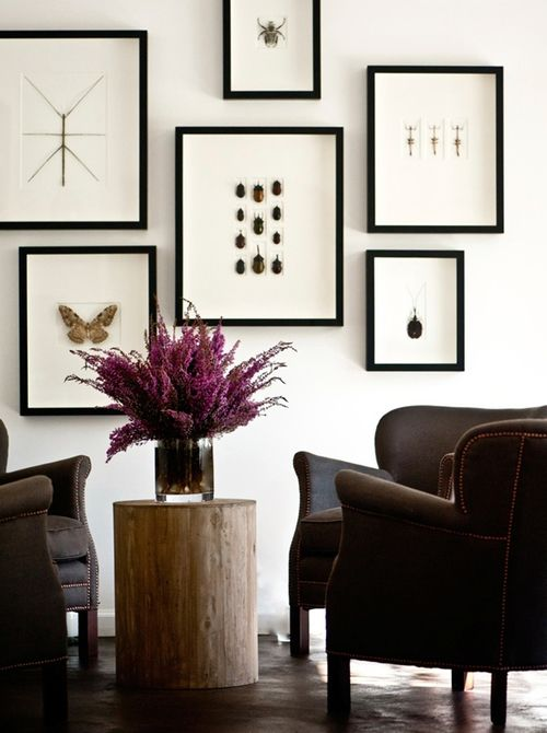 Sean Anderson Design Portfolio